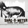 Shagometer: fuck the daddy